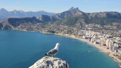 Photo of De 3 top bezienswaardigheden van Alicante